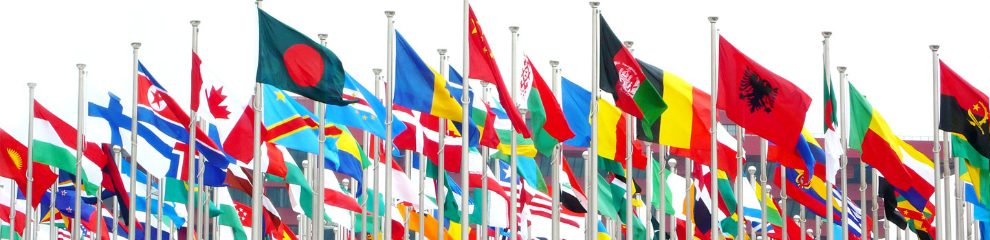 Foreign tax matters? We cover the world.